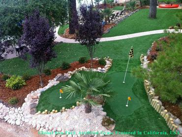 Synthetic Grass Portland, Oregon Best Indoor Putting Green, Small Backyard Ideas artificial grass