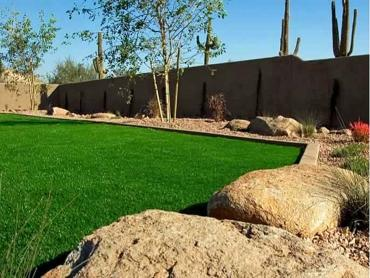 Synthetic Grass Seaside, Oregon Home And Garden, Backyard Design artificial grass