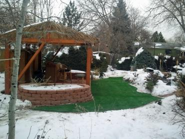 Artificial Grass Photos: Synthetic Lawn Long Creek, Oregon Paver Patio, Backyard Designs