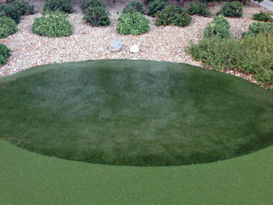 Artificial Grass Photos: Synthetic Turf Black Butte Ranch, Oregon Home And Garden