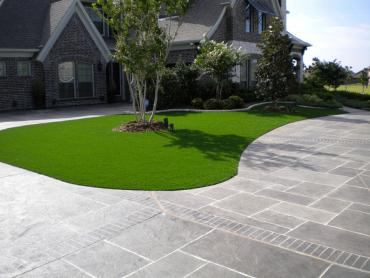 Artificial Grass Photos: Synthetic Turf Gaston, Oregon Backyard Deck Ideas, Front Yard Design