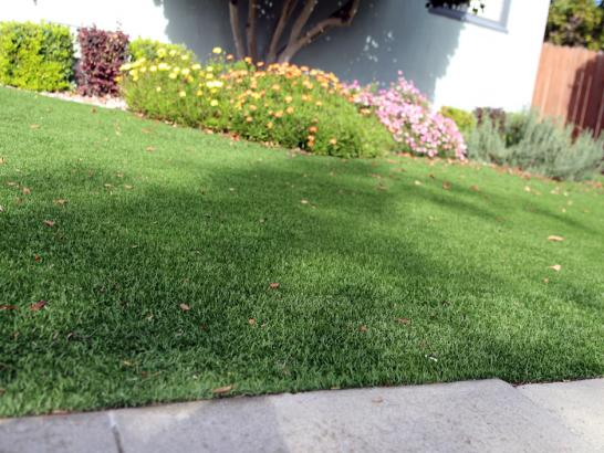 Artificial Grass Photos: Synthetic Turf King City, Oregon Lawns, Landscaping Ideas For Front Yard