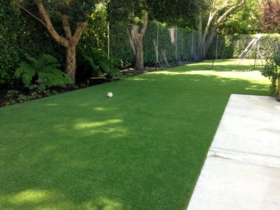 Artificial Grass Photos: Synthetic Turf Lincoln Beach, Oregon Landscape Rock