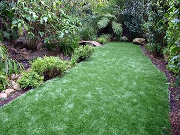 Artificial Grass Photos: Synthetic Turf Supplier Cascade Locks, Oregon Backyard Playground, Small Backyard Ideas