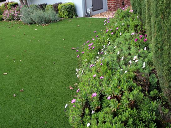 Artificial Grass Photos: Synthetic Turf Supplier Labish Village, Oregon Rooftop, Front Yard Landscaping