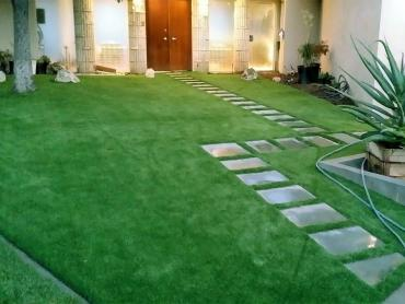 Synthetic Turf Supplier Monmouth, Oregon Gardeners, Front Yard Design artificial grass
