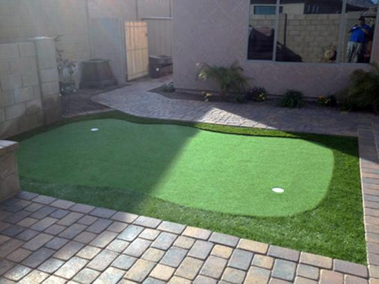Artificial Grass Photos: Turf Grass Saint Helens, Oregon Office Putting Green, Backyard Ideas