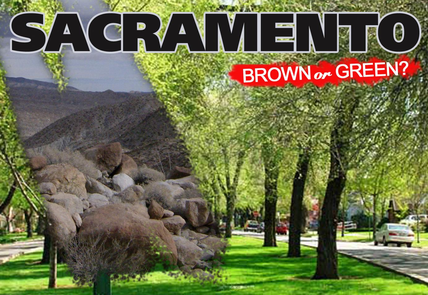 syntheticgrass Sacramento: Back to Desert, or Lifting a Ban on Artificial Grass?