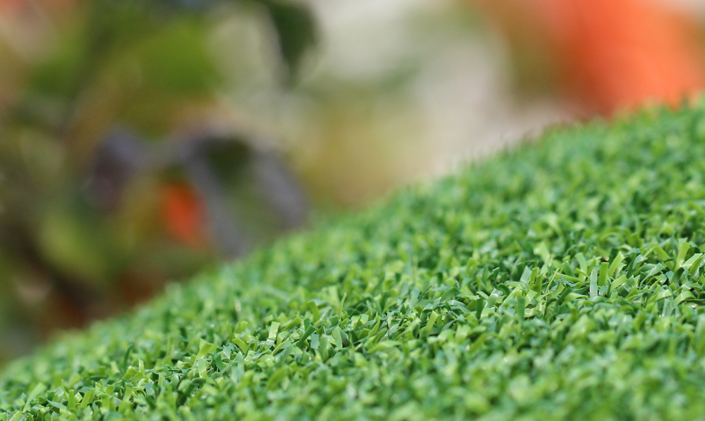 Artificial Grass Putt-60 Bicolor Artificial Grass Portland Oregon